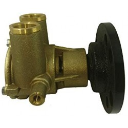 Raw Water Pump OEM 3860703