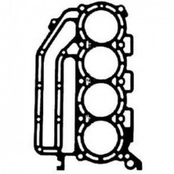 Johnson/ Evinrude Cylinder...